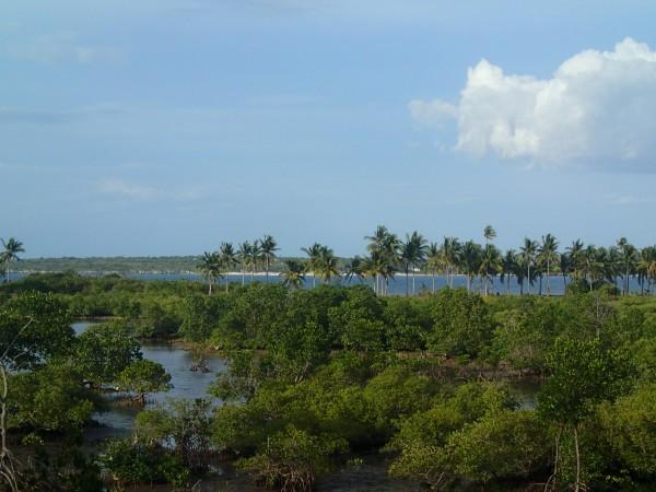 Landskabet på Bantayan Island