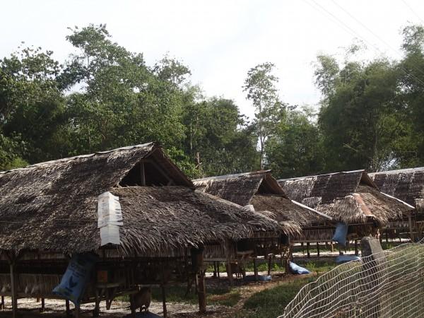 Hønsefarm på Bantayan Island