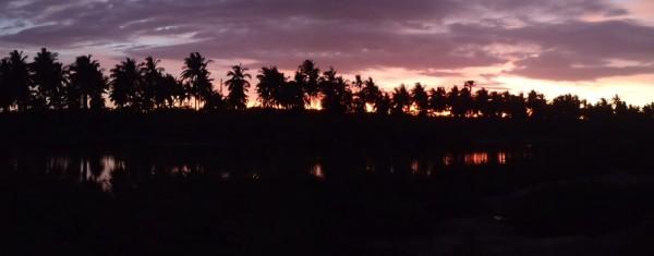 Palmer i solnedgangen på Bantayan