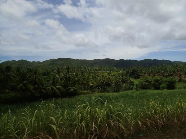 udsigt Cebu Island