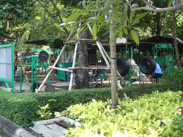 Træning i Lumpini park